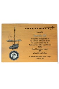1999: Lockheed Martin MEWSS Appreciation